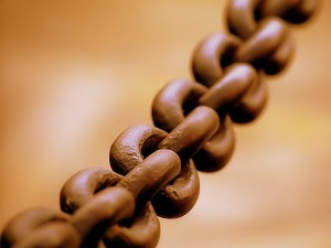 Broad_chain_closeup (1)