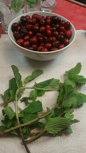 Winter Dream: Cranberries and Mint